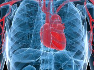 Senior Care in Chico CA: Treating Cardiac Arrest