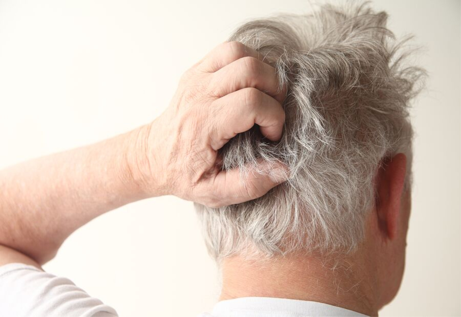 Senior Health: Memory Loss